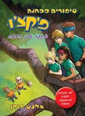 סיפורים ממחנה פיקצ'ו 1: אתגר אבן המגה