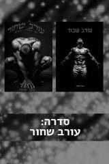 סדרת עורב שחור